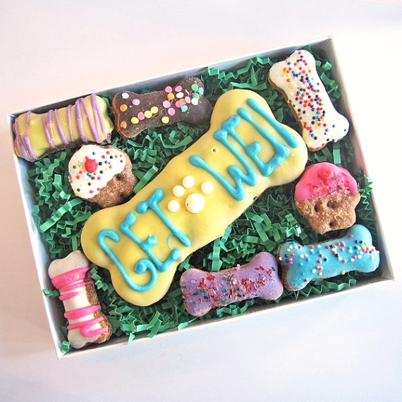 Get Well Treats For Dogs