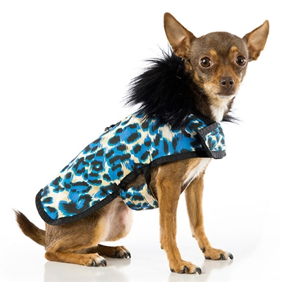 Animal Print Blue Posh Puppy Coatpampered Paw Gifts