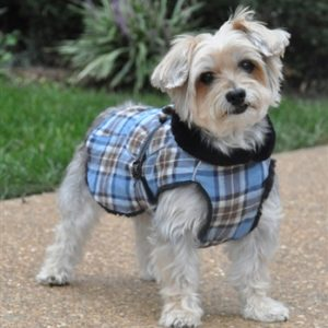 Coats For Dogs & Snow Suits
