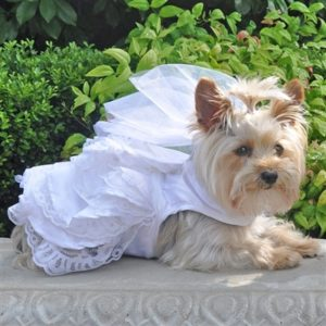 White Satin Wedding Dress For Dogs