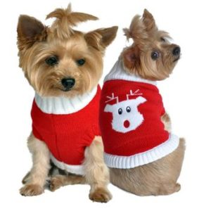 Christmas Dog Sweaters