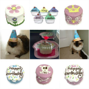 Cat Birthday Cakes and Gifts