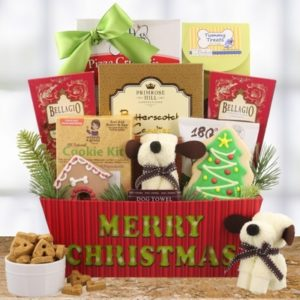 christmas-joy-for-dog-and-owner-1