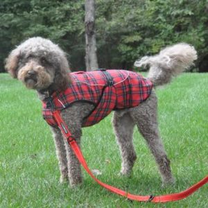 alpine-all-weather-dog-coat-flannel-red-green-plaid-5424