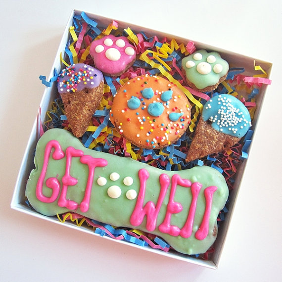 Get Well Gift Box for Dogs