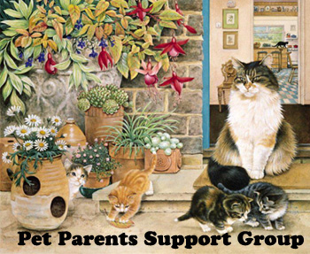https://www.facebook.com/pages/Pet-Parents-Support-Group/102263226587435