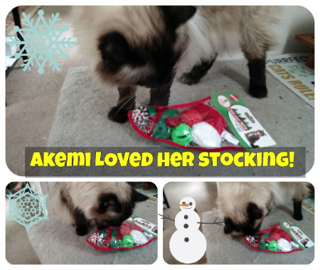 Holiday Cat Stocking Christmas Gift For Cats