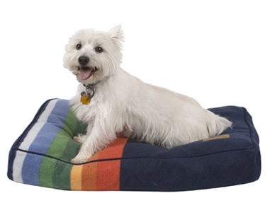 Rainbow Luxury Memory Fiber Dog/Cat Bed