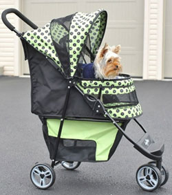 Benefits Of Pet Strollers Pampered Paw Gifts