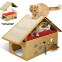 Kitty Furniture and Scratchers