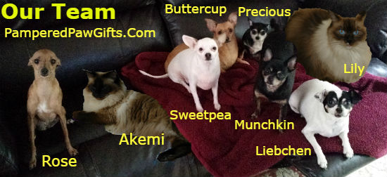 pampered paw gifts team