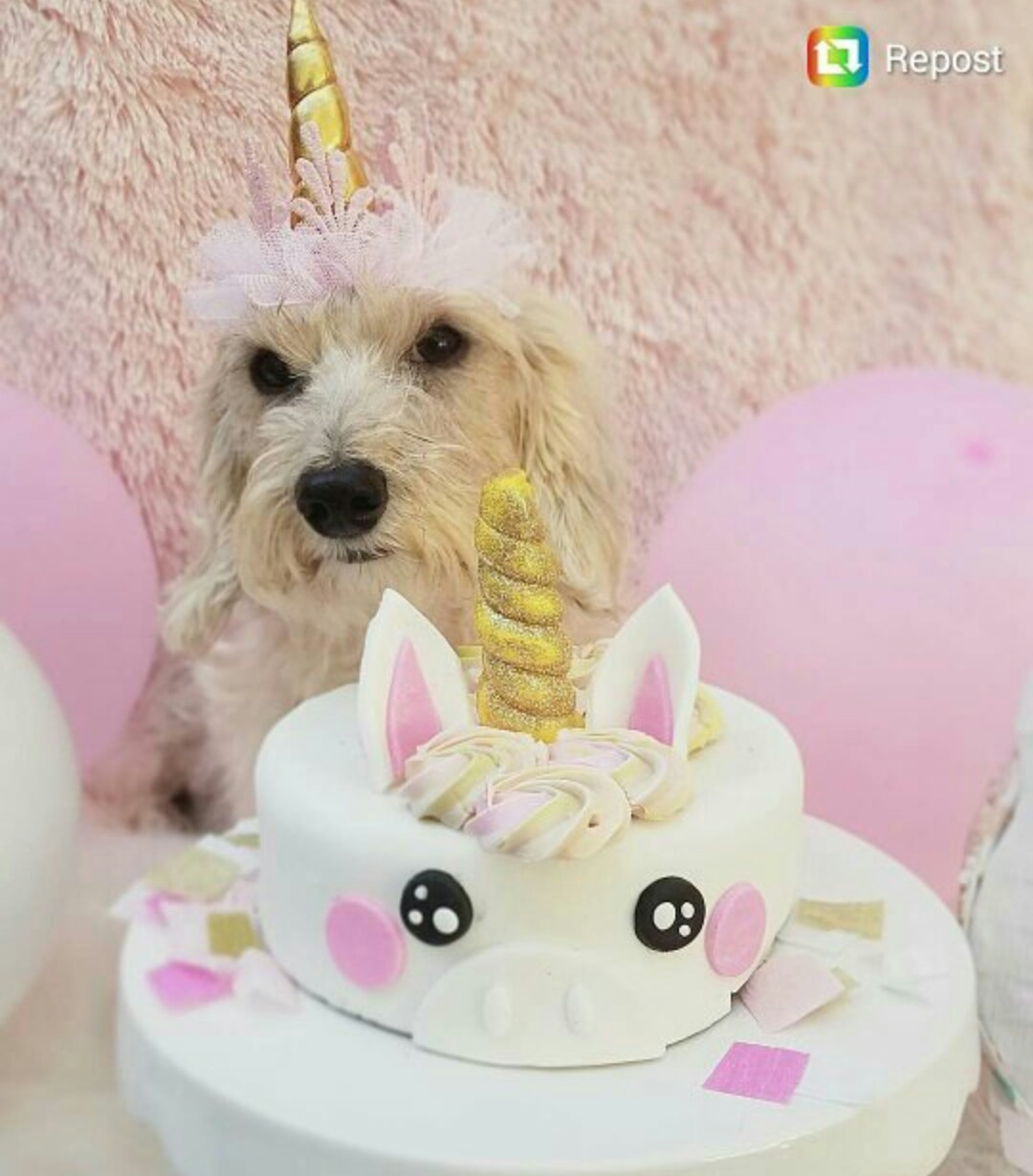 Luxury Unicorn Peanut Er Banana Dog Cake