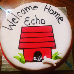 Welcome home cake for dogs