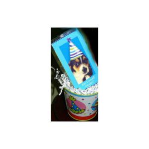 Yappy Birthday Bucket treat