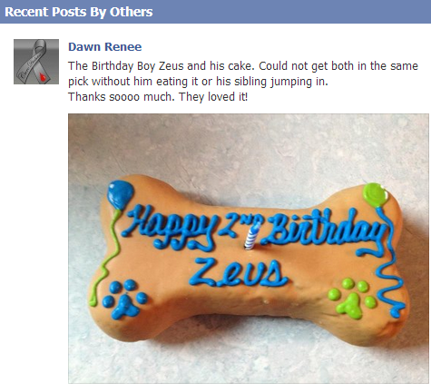 Zeus loved his dog birthday cake from pampered paw gifts
