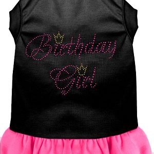 birthday girl rhinestone dog dress