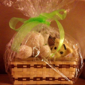 Get well dog gift