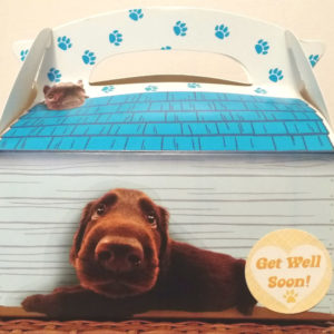 Get well dog treats