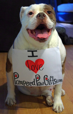 I love pampered paw gifts