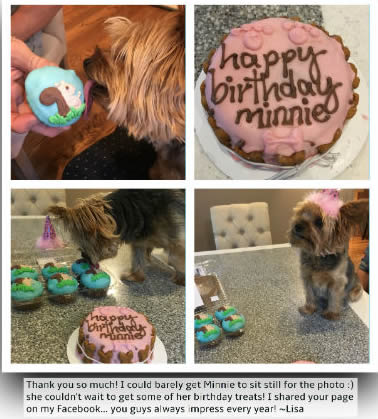 Minnie with a birthday cake from pampered paw gifts
