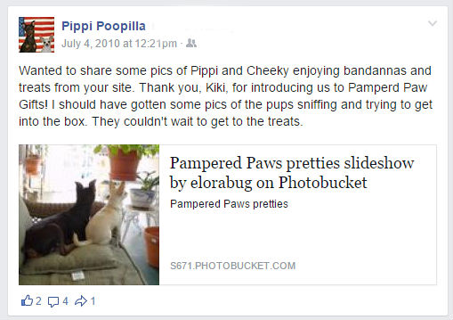 Pippi and Cheeky review of pampered paw gifts treats and bandannas