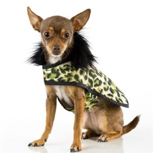 Animal Print Green - Posh Puppy Coat