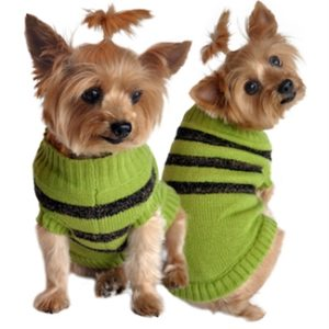 Olive Green and Brown Stripe Sweater For Dogs