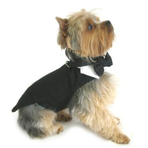Wedding Tuxedo Black with Tails Bowtie Collar and D-Ring For Dogs