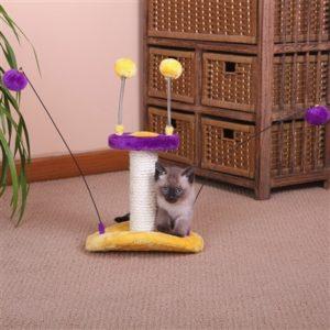Zippy Cat Toy