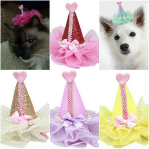 Pretty Party Hat Clip On