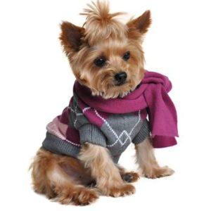 argyle-purple-dog-sweater-with-scarf-1197