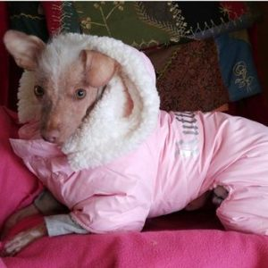 ruffin-it-snowsuit-pink-9208