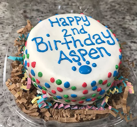 Marvelous Cat Confetti Birthday Cake Grain Free Pampered Paw Gifts Funny Birthday Cards Online Elaedamsfinfo