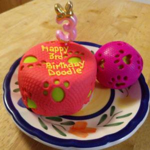 Enjoyable Easy Dog Birthday Cake Recipe Pampered Paw Gifts Funny Birthday Cards Online Overcheapnameinfo